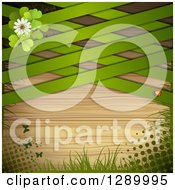 Clipart Of A St Patricks Day Or Spring Background With Clovers Butterflies Grass Halftone A Ladybug And Green Lattice Over Wood Royalty Free Vector Illustration by merlinul