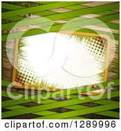 Clipart Of A St Patricks Day Or Spring Background With A Ladybug Halftone And Grass Sign And Green Lattice Over Wood Royalty Free Vector Illustration