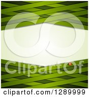 Clipart Of A St Patricks Day Or Spring Background With A Ladybug And Green Lattice Royalty Free Vector Illustration