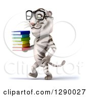 Clipart Of A 3d Bespectacled White Tiger Walking To The Left And Holding A Stack Of Books Royalty Free Illustration