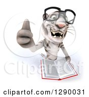 Clipart Of A 3d Bespectacled White Tiger Holding Up A Thumb And An Open Book Royalty Free Illustration