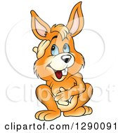 Clipart Of A Happy Thinking Blue Eyed Orange Rabbit Royalty Free Vector Illustration by dero