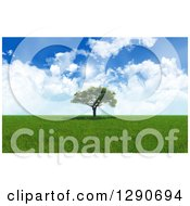 Clipart Of A 3d Grassy Prairie With A Lone Tree And Sunshine Royalty Free Illustration