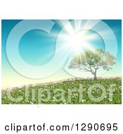 Clipart Of A 3d Sun Shining Over A Tree In A Landscape With Grass And Wild Daisies Royalty Free Illustration by KJ Pargeter