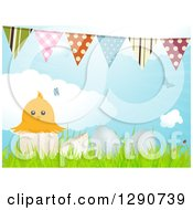 Clipart Of A Yellow Chick In An Egg Shell With 3d Eggs In Grass Birds Clouds And Bunting Flags Royalty Free Vector Illustration by elaineitalia