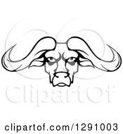 Black And White Longhorn Bull Face