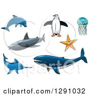 Clipart Of A Dolphin Penguin Jellyfish Starfish Shark Marlin And Whale Royalty Free Vector Illustration
