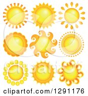 Summer Sun Designs