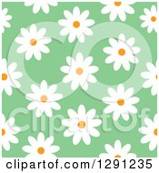 Clipart Of A Seamless Background Pattern Of White Daisy Flowers On Green Royalty Free Vector Illustration by visekart