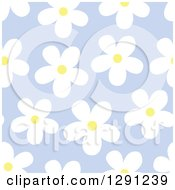 Clipart Of A Seamless Background Pattern Of White And Yellow Daisy Flowers On Purple Royalty Free Vector Illustration by visekart