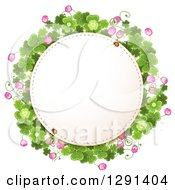 Lady Bug On A Round St Patricks Day Frame With Shamrock Clovers And Flowers
