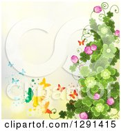 St Patricks Day Background Of Shamrock Clovers And Flowers With Rainbow Butterflies On Yellow