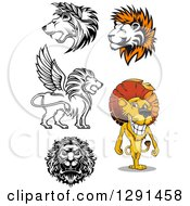 Male Lions In Black And White And Cartoon Styles