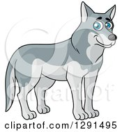 Clipart Of A Cartoon Happy Blu Eyed Gray Wolf Royalty Free Vector Illustration