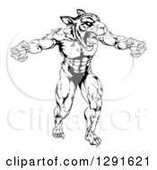 Black And White Vicious Muscular Tiger Man Attacking