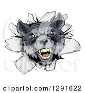 Clipart Of A Vicious Gray Wolf Breaking Through A Wall Royalty Free Vector Illustration