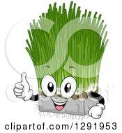 Cartoon Happy Wheatgrass Character Holding A Thumb Up