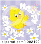 Clipart Of A Happy Easter Greeting Butterfly And Daisies Around A Yellow Chick On Purple Checkers Royalty Free Vector Illustration