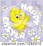 Clipart Of A Happy Easter Greeting Butterfly And Daisies Around A Chick On Purple Checkers Royalty Free Vector Illustration