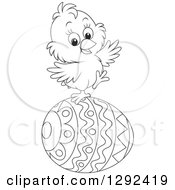 Clipart Of A Happy Black And White Easter Chick Balancing On A Decorated Egg Royalty Free Vector Illustration