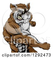 Clipart Of A Muscular Raccoon Man Mascot Punching From The Hips Up Royalty Free Vector Illustration by AtStockIllustration