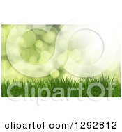 Clipart Of A 3d Green Background With Grass Over Flares Royalty Free Illustration