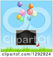 Floating Blackboard With Helium Party Balloons And Butterfly Over Grass And Blue Sky