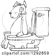 Black And White Dog Pooping On A Toilet