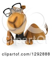 Clipart Of A 3d Happy Bespectacled Business Camel Over A Sign Royalty Free Illustration