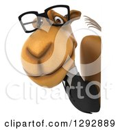 Clipart Of A 3d Happy Bespectacled Business Camel Around A Sign Royalty Free Illustration