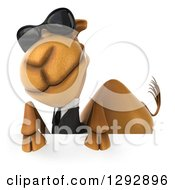 Clipart Of A 3d Cool Business Camel Wearing Sunglasses Over A Sign Royalty Free Illustration