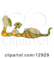 Happy Snake Couple Expecting Eggs Clipart Illustration by Dennis Cox