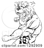 Clipart Of A Black And White Roaring Angry Muscular Bear Man Punching Royalty Free Vector Illustration