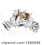 Clipart Of A Vicious Tough Bulldog Monster Shredding Through A Wall Royalty Free Vector Illustration by AtStockIllustration