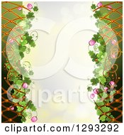 St Patricks Day Background With Shamrocks Clover Flowers Lattice And Ladybugs
