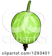 Clipart Of A Shiny Gooseberry Royalty Free Vector Illustration