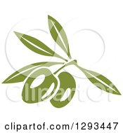 Clipart Of A Green Branch With Two Olives Royalty Free Vector Illustration