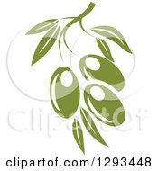Clipart Of A Green Branch With Three Olives Royalty Free Vector Illustration