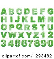 Clipart Of Grassy Green Capital Alphabet Letters And Numbers Royalty Free Vector Illustration by Vector Tradition SM