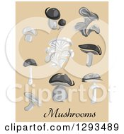 Clipart Of Grayscale Champignon Cep Boletus Chanterelle Oyster Agaric Mushrooms On Tan Royalty Free Vector Illustration
