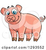 Clipart Of A Cartoon Alert Happy Blue Eyed Pink Pig Royalty Free Vector Illustration by Vector Tradition SM