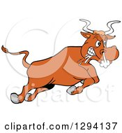 Clipart Of A Cartoon Angry Bull Steer Drooling And Charging Royalty Free Vector Illustration