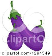 Long And Squat Purple Eggplants