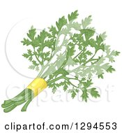 Clipart Of A Bunch Of Fresh Parsley Royalty Free Vector Illustration