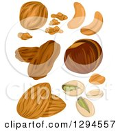 Clipart Of Varios Nuts Royalty Free Vector Illustration