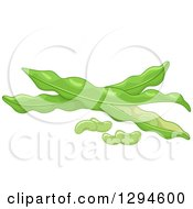 Clipart Of Fresh Lima Beans And Pods Royalty Free Vector Illustration