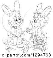 Lineart Clipart Of A Happy Black And White Female Bunny Giving An Easter Egg To A Male Rabbit Royalty Free Outline Vector Illustration