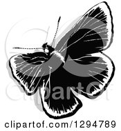 Clipart Of A Black And White Butterfly And Gray Shadow From Above Royalty Free Vector Illustration