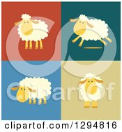 Clipart Of Happy Sheep Standing And Running On Different Colored Backgrounds Royalty Free Vector Illustration