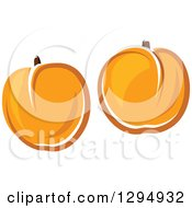 Clipart Of Two Apricots Royalty Free Vector Illustration
